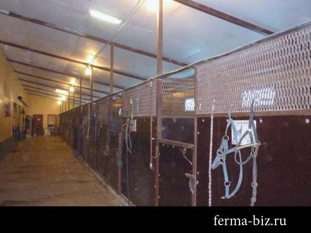 Ферма для лошадей