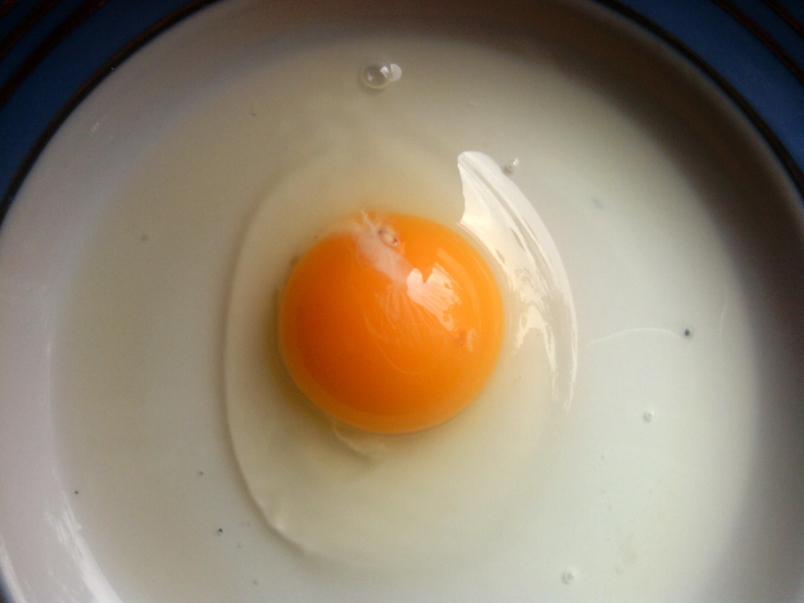 Разбитое куриное яйцо фото