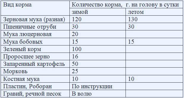 Таблица: рацион кормления уток перед яйцекладкой