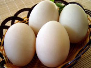 salty-ducks-eggs-300x225.jpg