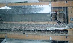Железная бункерная кормушка