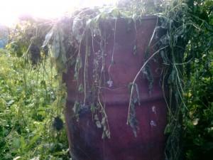 Бочка для приготовления компоста