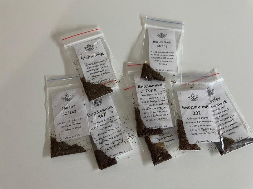 Посадка семян табака на рассаду