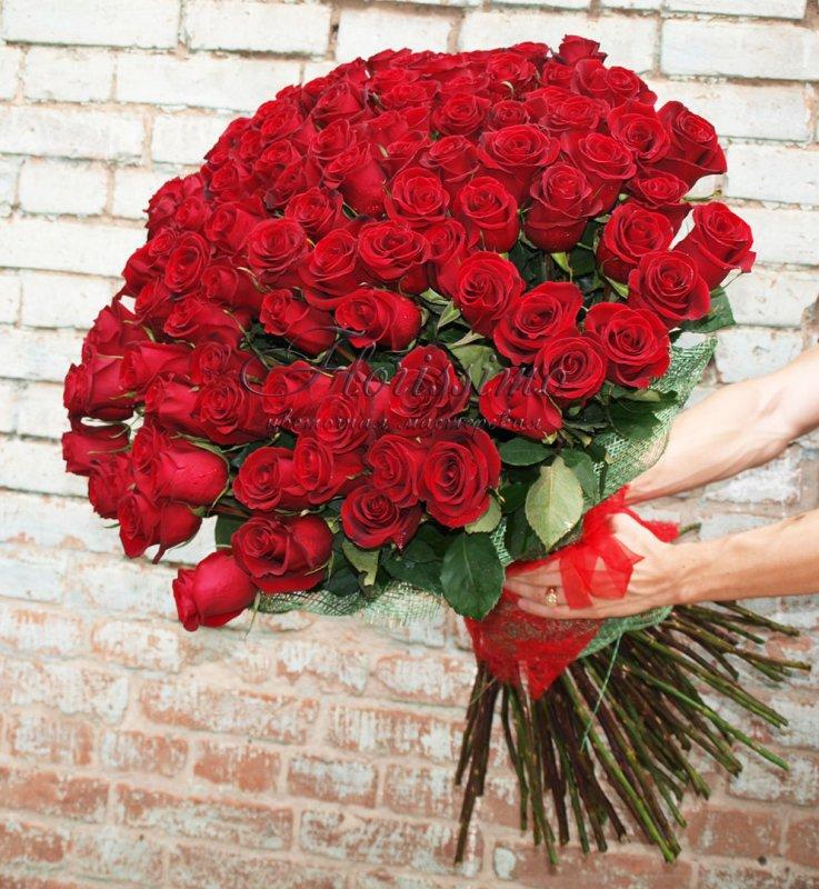 Большие розы фото