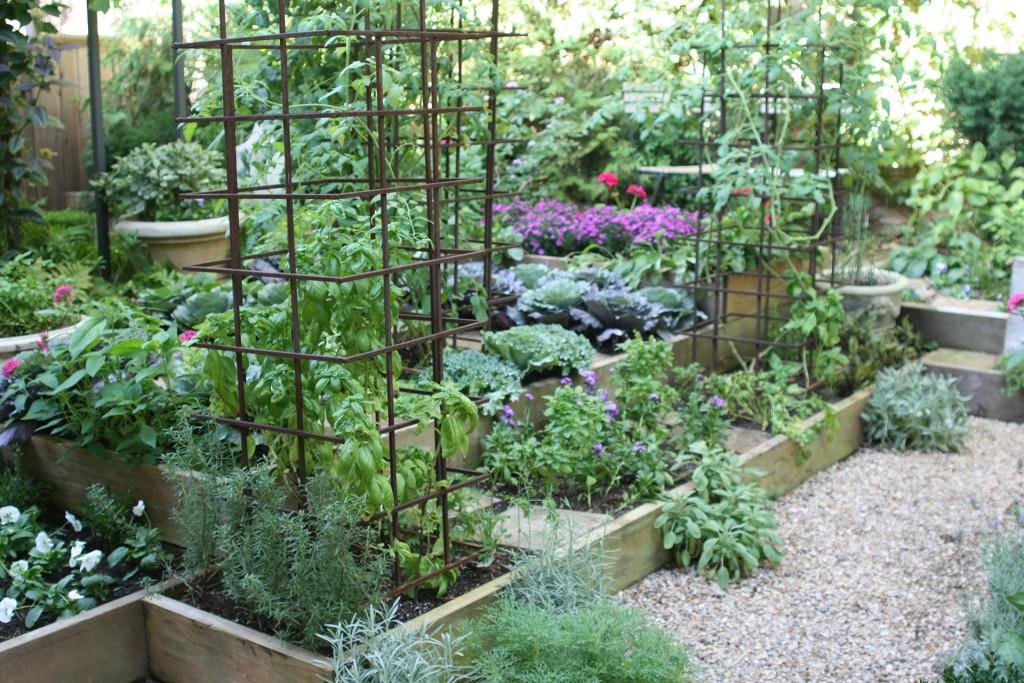 Фото: оригинальный огород своими руками