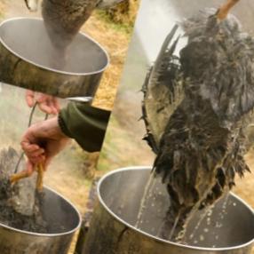 горячее ощипывание утки быстро