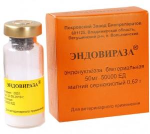 Изучение профилактического действия препарата Эндовираза