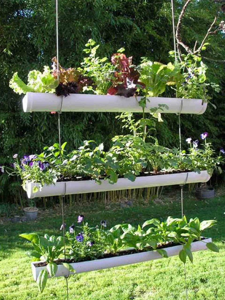 Идеи для огорода своими руками