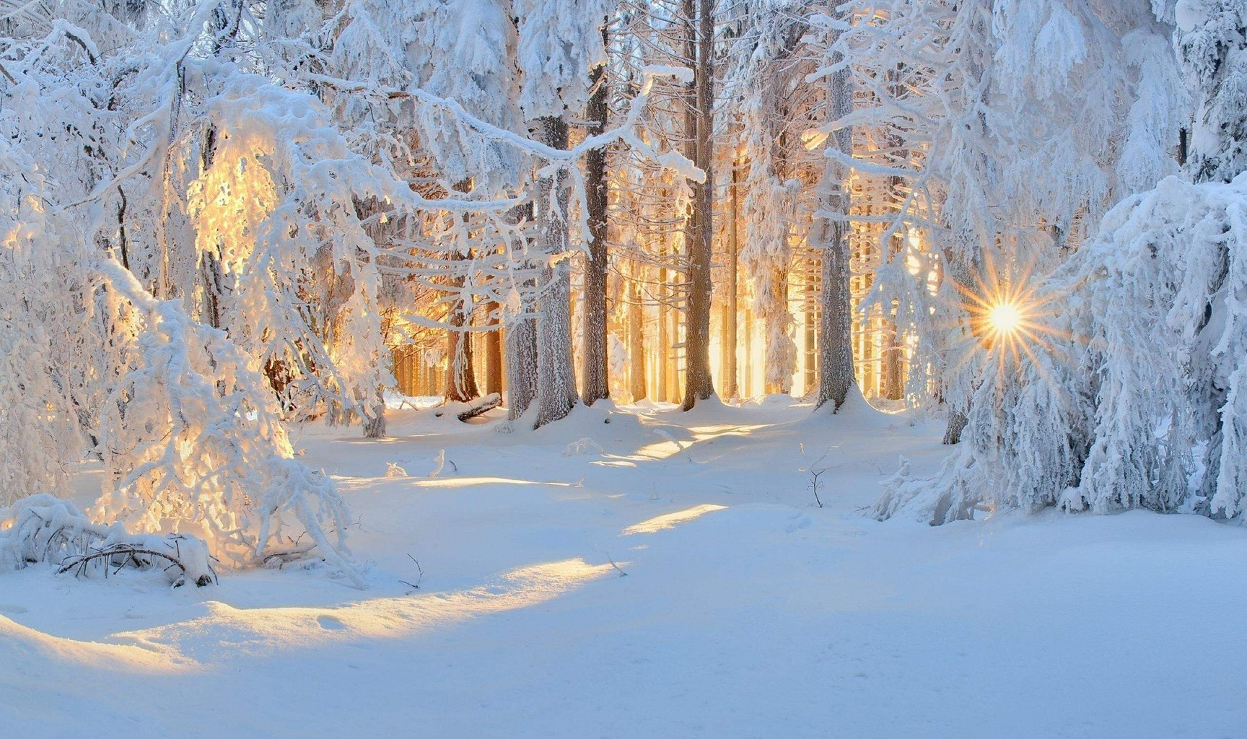 sneg-oboi-zima-winter-Favim.ru-4795775