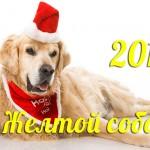 Красивые открытки на Новый год Собаки 2018: прикольные фото и картинки