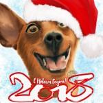 СМС поздравления с Новым годом Собаки 2018: смешные, короткие, прикольные