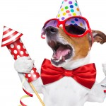 Стихи на Новый год 2018 год Собаки: смешные