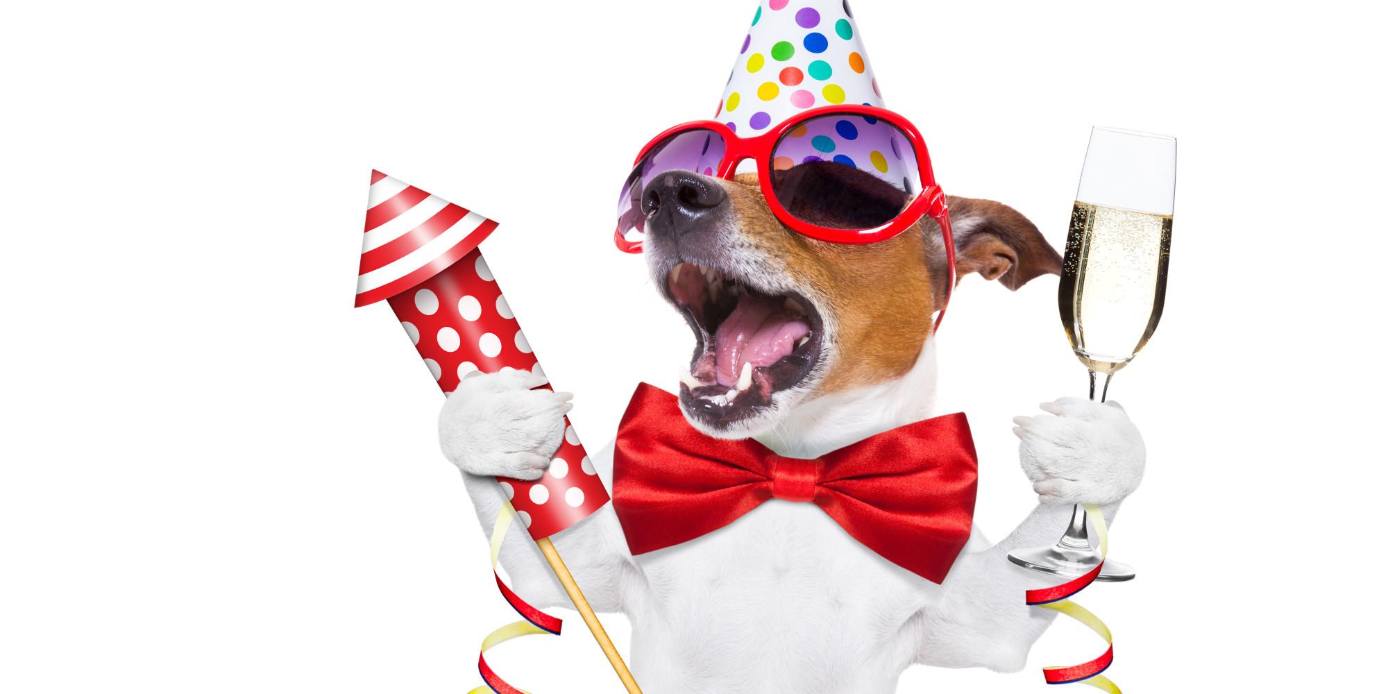 Стихи на Новый год 2018 год Собаки: смешные.