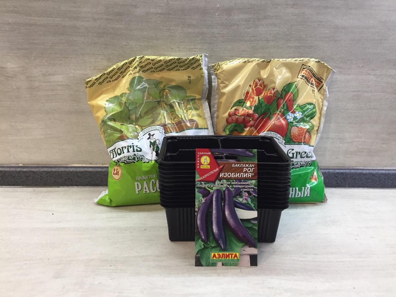 Как правильно посадить баклажаны на рассаду