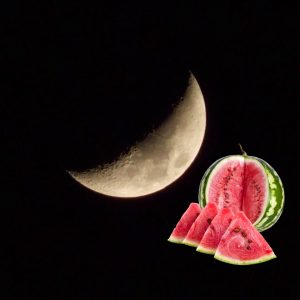 Когда сажать арбузы по лунному календарю