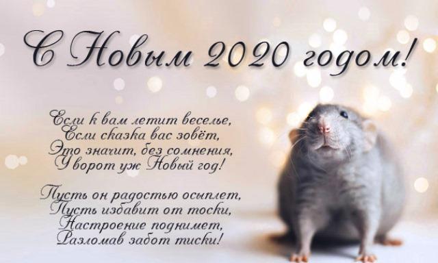 Прикольные поздравления коллегам с Новым годом 2020