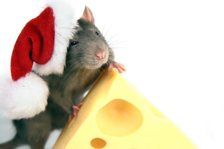 Картинки новый год мыши