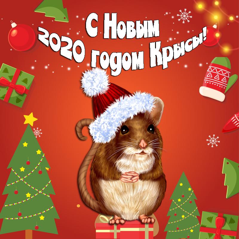 Красивые новогодние поздравления в год Крысы 2020
