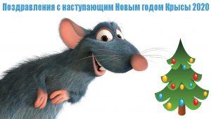 Новогодние поздравления с наступающим 2020 годом Крысы