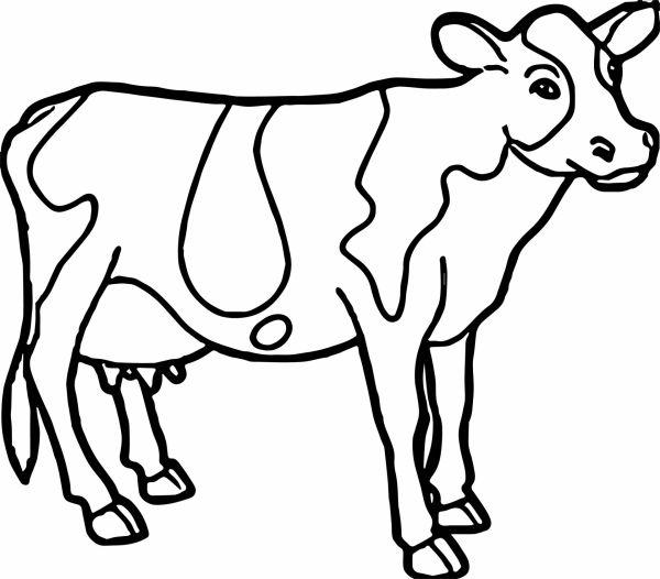 Раскраска с коровой