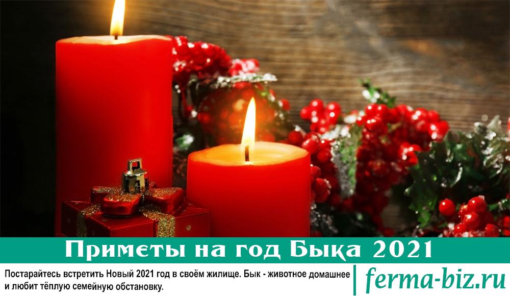 Приметы на год Быка 2021: встречаем Новый год
