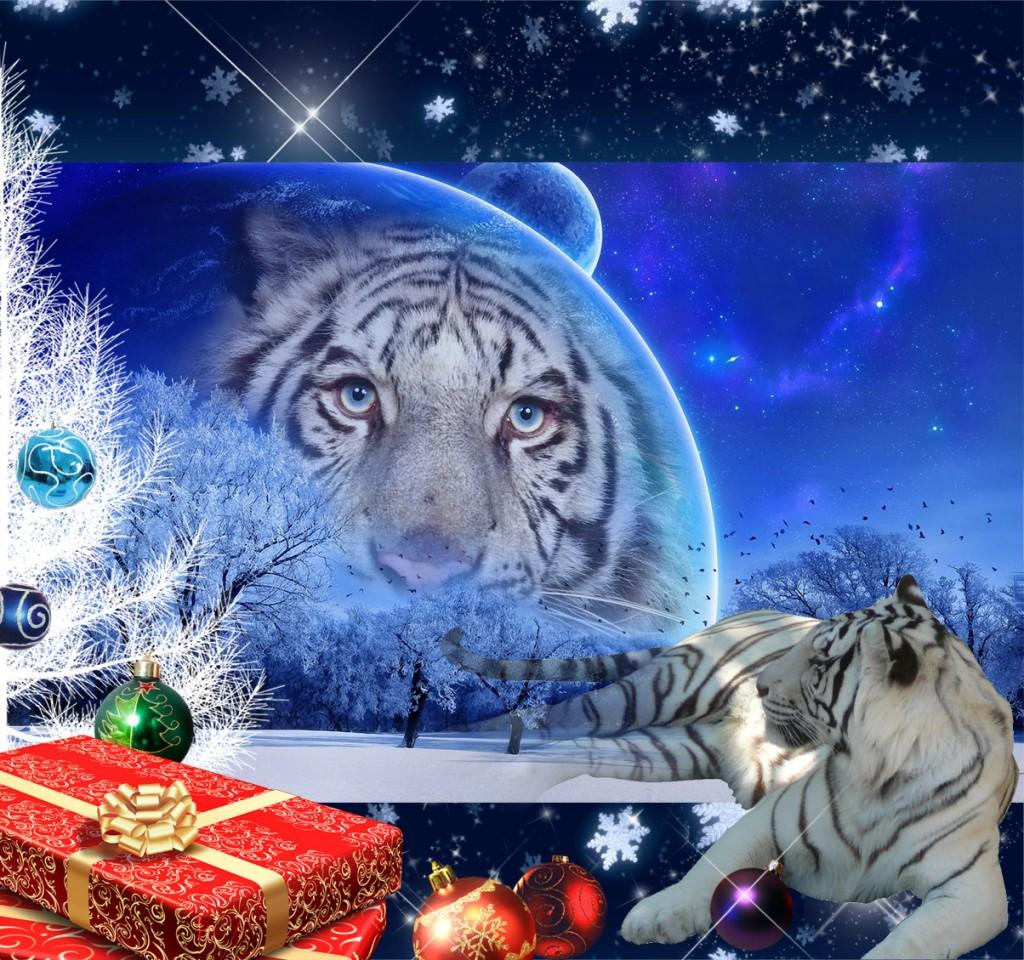 Прикольные новогодние лотереи 2022 в год Тигра