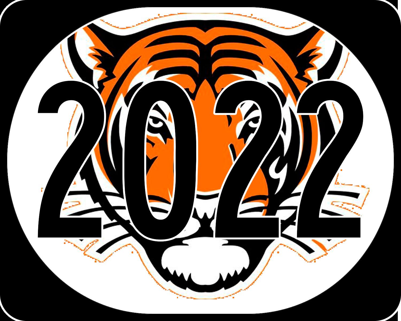 Новогодние надписи с символом года 2022 - Тигром