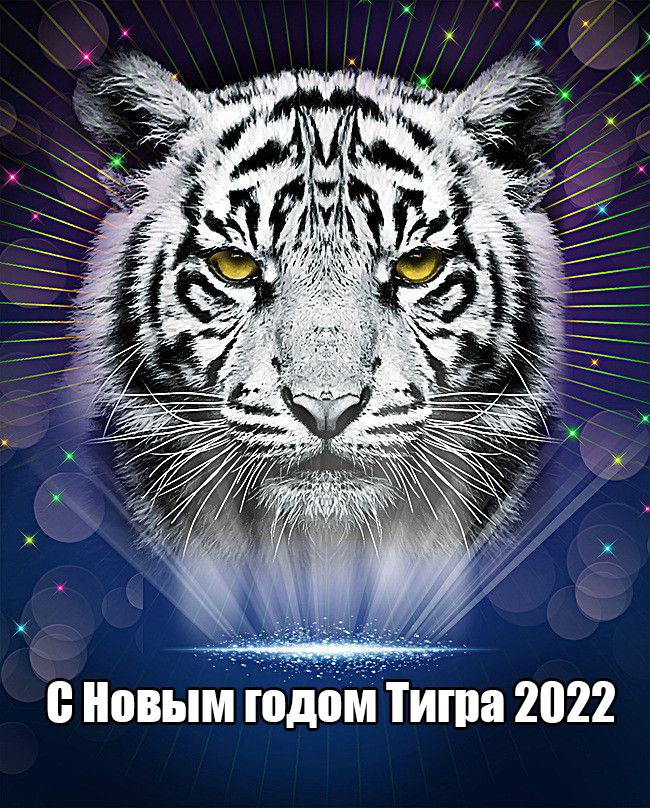 Открытки с Новым годом Тигра 2022