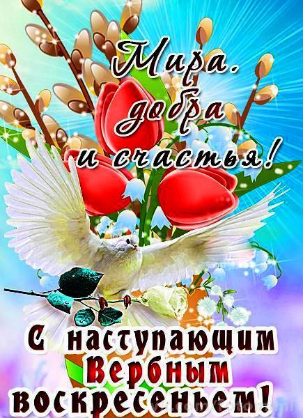 Открытки с поздравлениями на Вербное воскресенье
