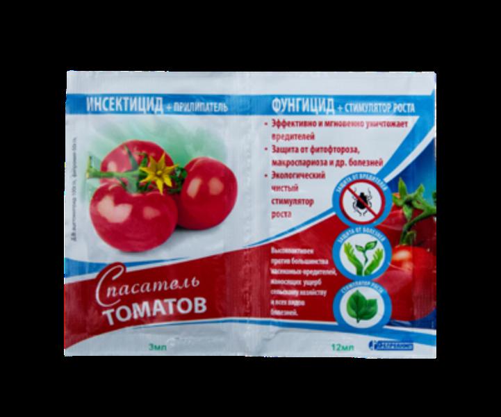 Антракноз томатов - описание, фото, лечение и профилактика